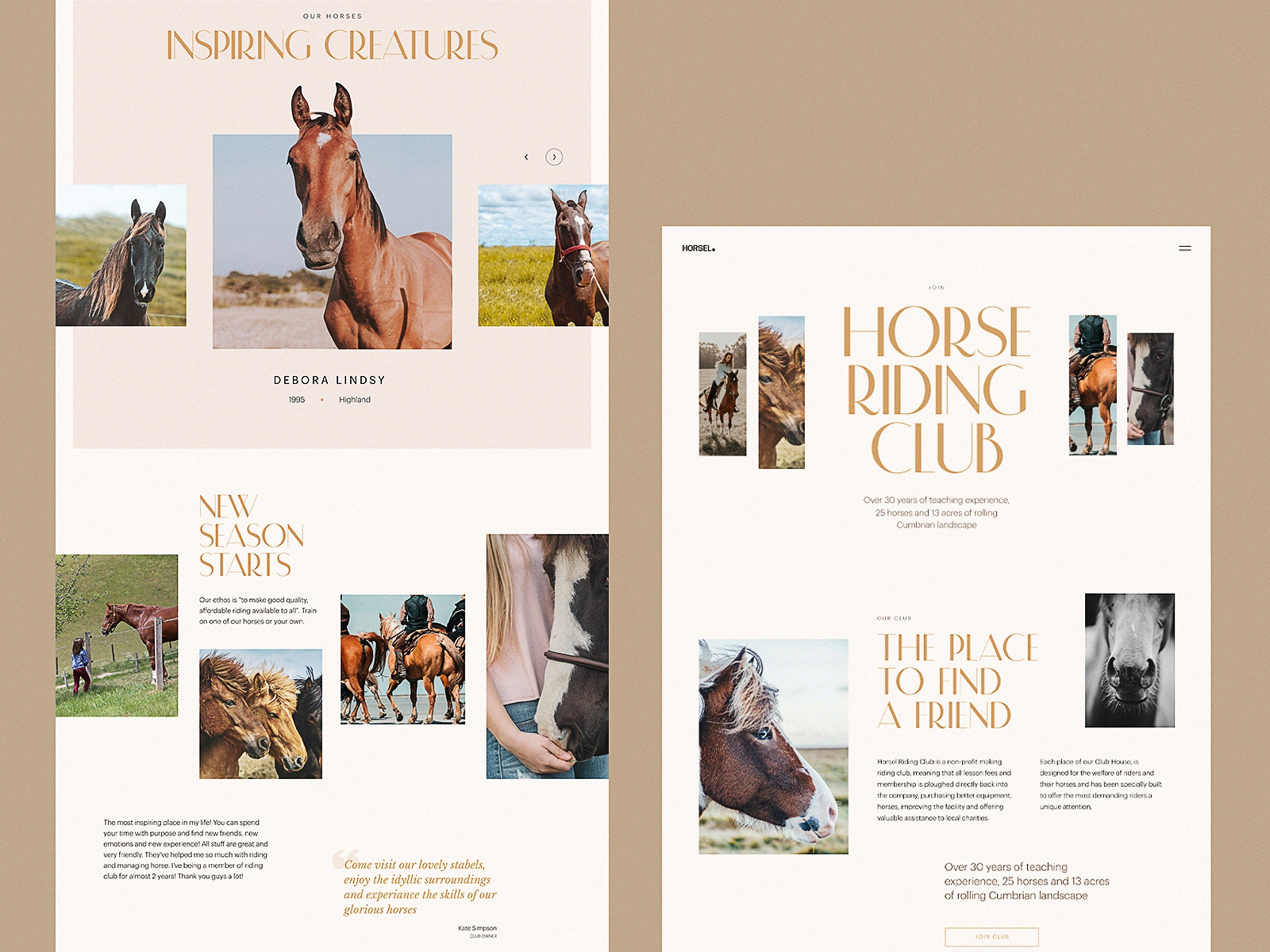 Horse Riding Club Website Design by tubik
