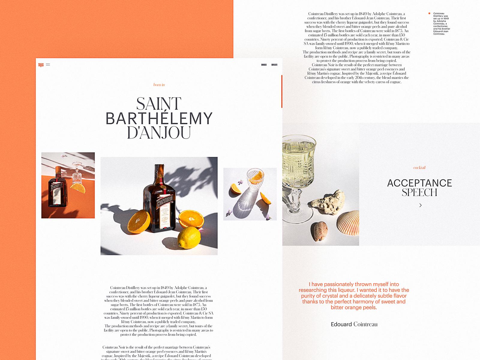 Bartending Encyclopedia Website Design by tubik
