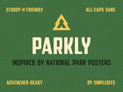 Parkly Font typedesign font simplebits