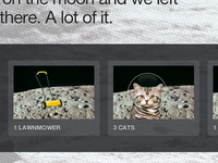 1 lawnmower, 3 cats