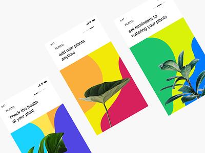 Plinto App Design - On-Boarding Screens typography branding websitedesign appdesign app userexperiance graphicdesign mobile userinterface design ux ui