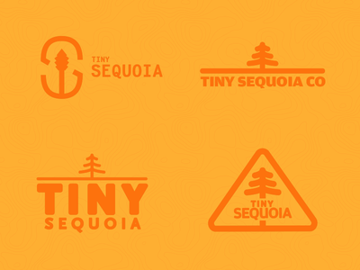 Tiny Sequoia Co - Branding (First Pass) decisions fresh delight orange logo branding sequoia tiny