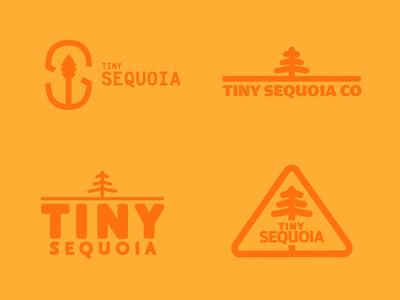 Tiny Sequoia Co - Branding (First Pass) decisions fresh delight orange logo branding sequoia tiny