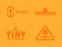 Tiny Sequoia Co - Branding (First Pass)