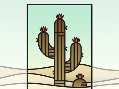 Cactus Flats flats cactus