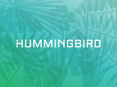 HB letters gradient type design custom exotic tropical palm mark logo logotype hummingbird notch