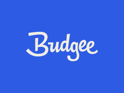 Budgee deal coupon logo logotype custom script blue budgie budget