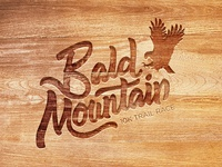 Bald Mountain Race Logo
