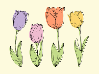 Tulips illustrations flowers minimal floral botanical pattern design flat design illustration pattern
