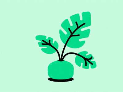 Plant illustration ecommerce design ecommerce plant