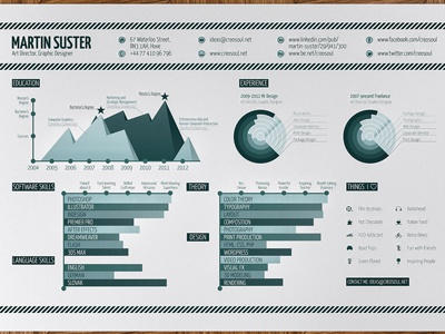 Infographic Resume infographic resume print graph curriculum vitae cv