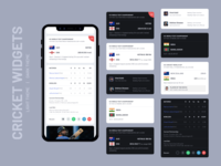 Cricket Widgets UI Design | Light and Dark Theme