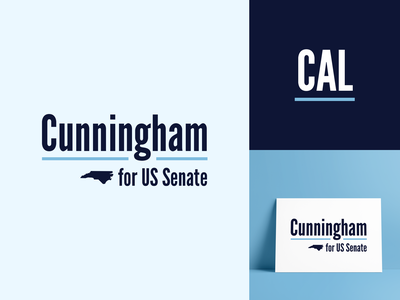 Senate Logo Option 1 senate north carolina campaign elections branding politics