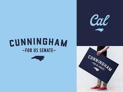Senate Logo Option 4 political campaign politician senate election campaign logo poster branding politics