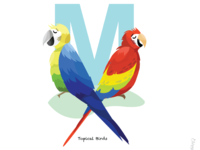 M is for the colourful Macaws