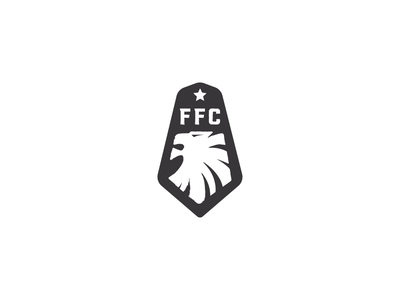 Fury Football Club project branding fun design logo follow me lion logo star lion soccer football fury