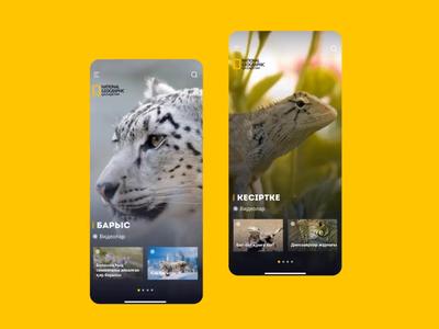 National Geographic Qazaqstan natgeo appdesign motion ux animation ui
