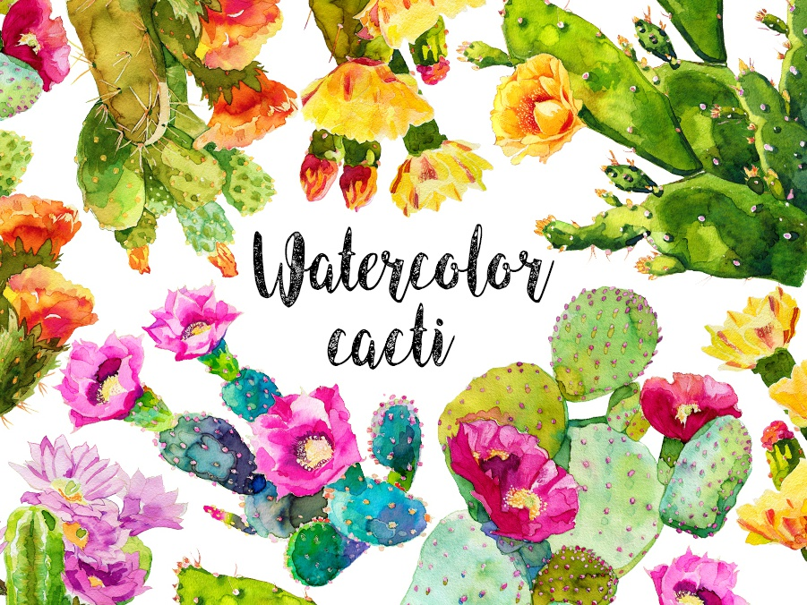 Watercolor cactus collection. made to order watercolor painting design cacti watercolor fabric pattern comission plants illustration flowers