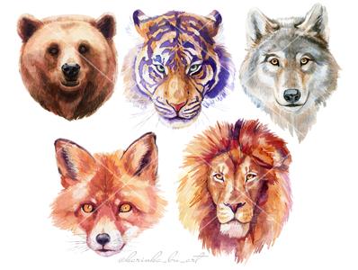 Watercolor animals illustrations