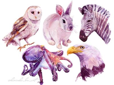 36 animal illustrations In 30 days.