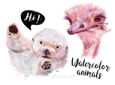 Watercolor animals illustrations