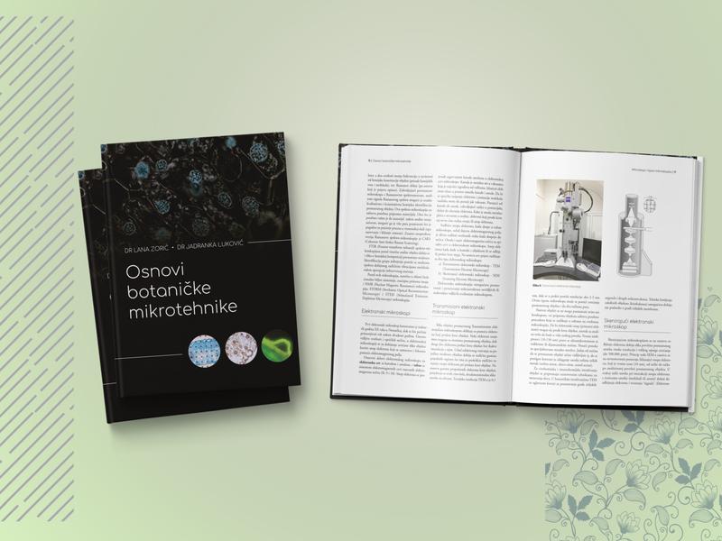 Book typography books book design