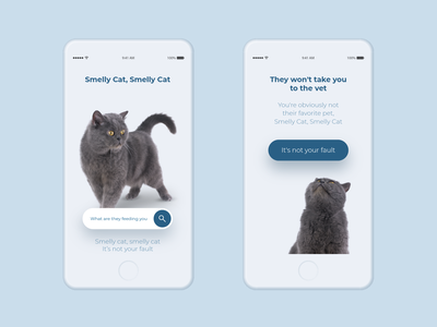 Smelly cat app pet friends song cat mobile freebie stock photo interace ui free