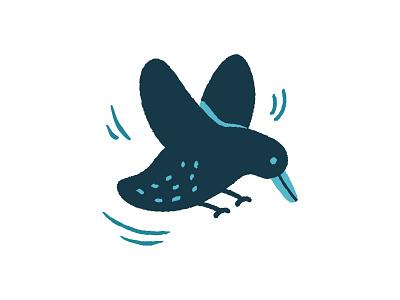 Swity bird pigeon sparrow little black wings flying bird illustration illustrator vector cute sweet