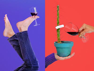 Ladies, Wine & Design El Paso silly whimsy catcus photography el paso design wine