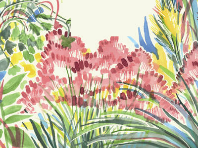 Native Grasses of Georgia watercolor trees plants nature illustration georgia flowers design