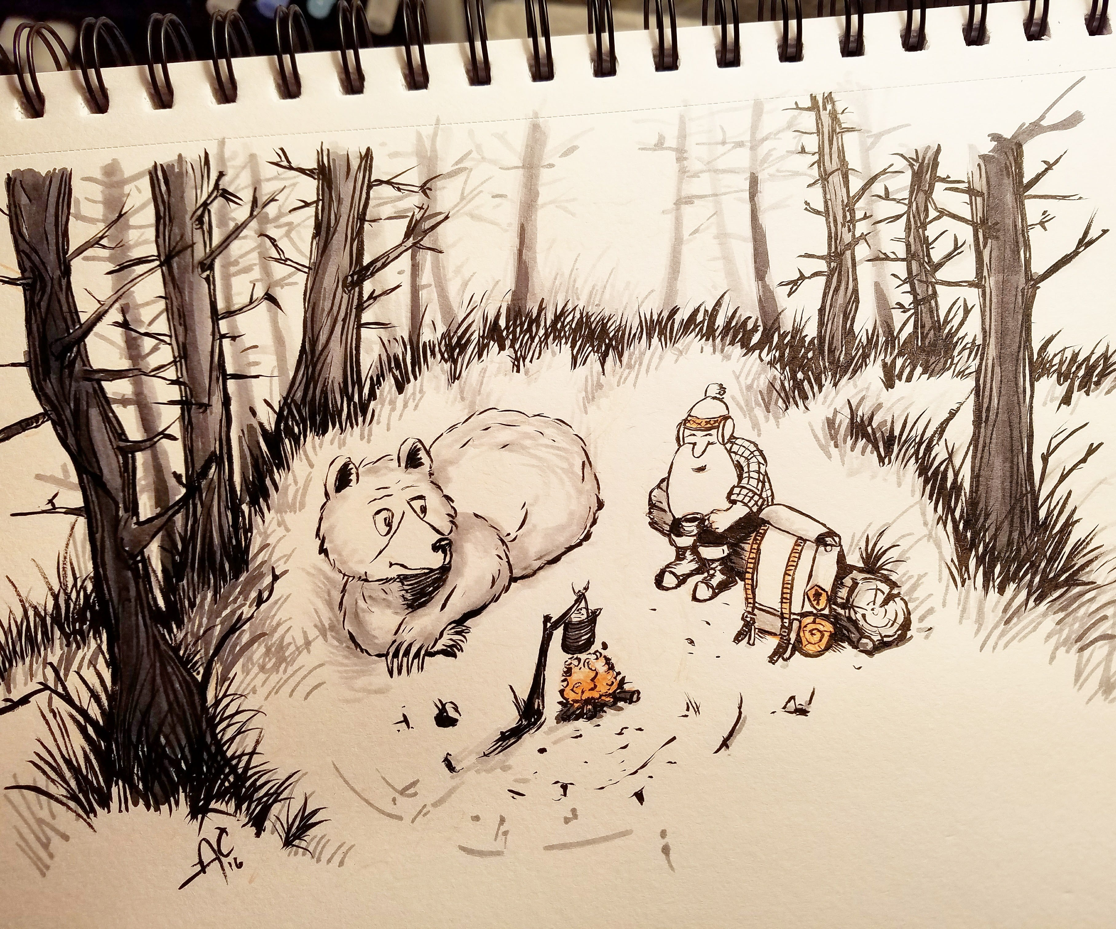 Bearcampfire