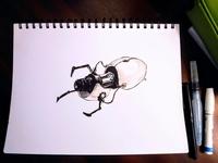 Something I drew...for Science.
