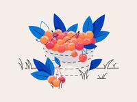 Cherry Basket duotone orange blue vector illustration vector nature minimal linework line art line illustration digital illustration cherry adobe illustrator adobe abstract 2d
