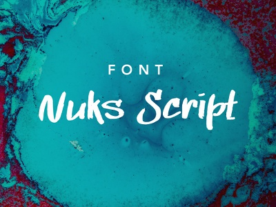 Nuks Font font script signature handwritten pen logo typeface sign logotype brand ttf calligraphy