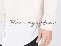 Signeton Handwritten Font