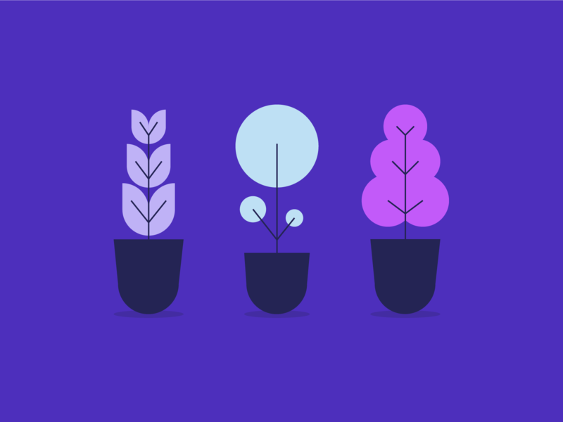 Plant Illustrations flat web illustration grow houseplants garden tree web illustration plant illustration plant