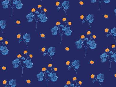 Cloudberry pattern