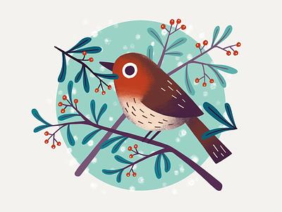 Winter bird animal snowy snow winter robin bird character procreate art digital art procreate illustration digital illustration