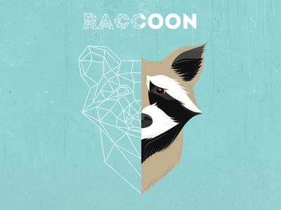 Raccoon blue poly illustration raccoon animal