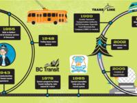 Thebuzzer timeline illustration.rbg