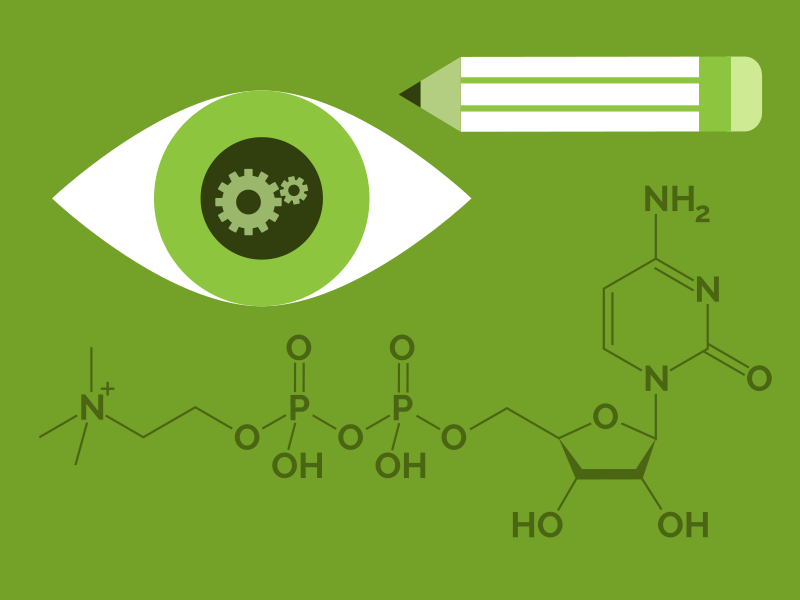 Focus Boosting molecule illustration pencil eye infographic