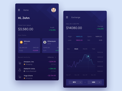 Crypto Wallet Exploration wallet ui token payment mobile icon design dashboard cryptocurrency crypto bitcoin app