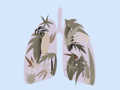 lungs anatomy body human drawing illustration nature foliage leaves lungs