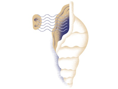 """""""THE MUSEUM OF THOUGHT"""" — Cowrie Hat seashell shell waves sound hear ear illustration thought hat cowrie"""