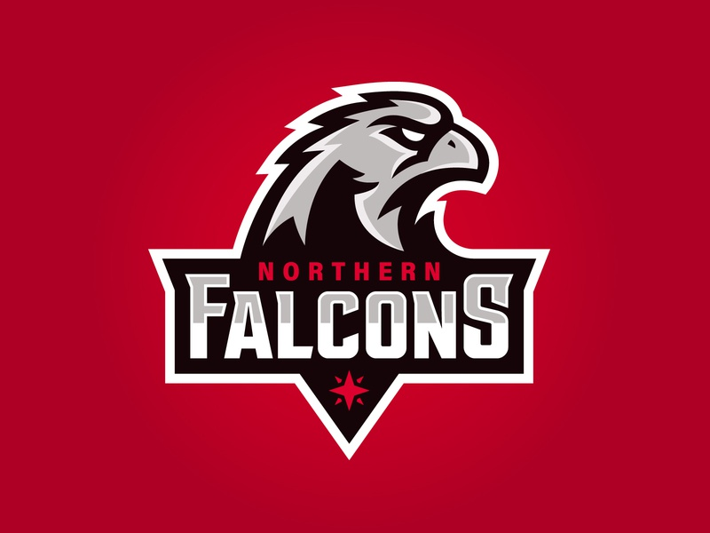 Northern Falcons Logo northern north sport logo team logo vector branding illustration logo design logo sports logo falcon sports mascot mascot sports irish rugby ireland touch rugby rugby falcons