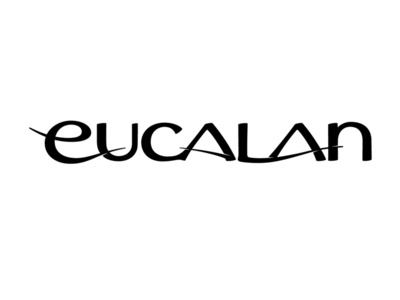 Eucalan typography branddevelopment identitydesign silk gentle flow lettering custom lettering hand lettering product branding fine fabric wash lanolin eucalyptus logo design branding word mark design