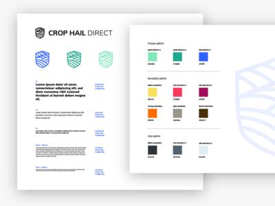 Crop Hail Direct Visual guideline - work in progress