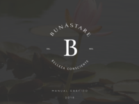 logo application - Bunastare