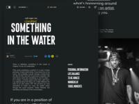 Music.com - Article/Blog
