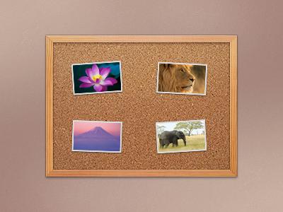 Corkboard corkboard cork board apple lion ui